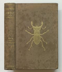 British beetles | by Thomas Fisher Rare Book Library, UofT