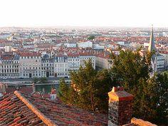 Les toits de Lyon au petit matin
