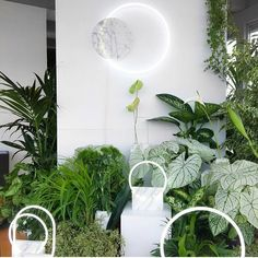 If you love @blocstudios @sabine_marcelis @carlkleiner and lots and lots of plants as much as we do then you'll love a little installation we're planning at Matter later this month. Hint ☝ Photo compliments of @tmagazine