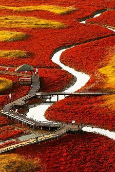 "ponderation: "" Fairy tale of Autumn day by SEUNG-KI KIM """