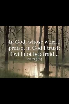 """Psalm 56:4  -  """"Choose today to fear not"""" Walk in the light of His abiding love and the truth of His Word. You have an assurance in Him that he will never leave you nor forsake you"""" He will never turn His back on you. His face shall always be toward you. Hope in Him and choose today to fear not"""""""
