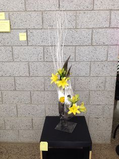 Best in Show 2014. Regional Lily Show