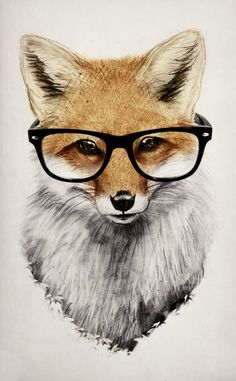 red fox, glasses, fox