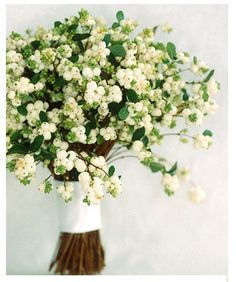 """""""Berry"""" Bouquet A bundle of bridal-white snowberries is wrapped in a white satin ribbon with white-beaded trim pinned to the top and bottom edges.: Wedding Bouquets by Color -- Martha Stewart Weddings Winter Wedding Flowers, White Wedding Bouquets, Floral Bouquets, Bouquet Wedding, Berry Wedding, Small Bouquet, Winter Weddings, Simple Weddings, Fall Wedding"""