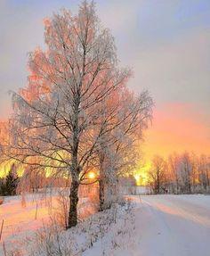 Landscape Photography Tips Winter Sunset, Winter Love, Winter Scenery, Good Morning Winter, I Love Snow, Morning Sun, Winter Photography, Landscape Photography, Nature Photography