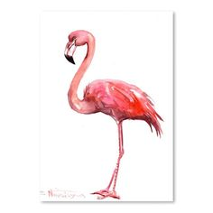 Flamingo Giclee Print | Joss & Main