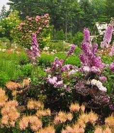 Coastal Maine Botanical Gardens (Field Trip!) http://www.mainegardens.org/
