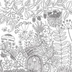 Livro - Floresta Encantada: Livro de Colorir e Caça ao Tesouro Antiestresse - Johanna Basford - Artes no CasasBahia.com.br