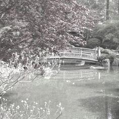 Japanese garden Spokane