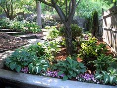A variety of shade plantings... adding a hint of color to the very green shade garden.