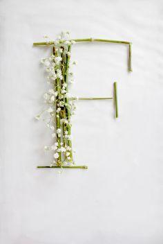 Design Fixation: {Typeface Tuesday} Flower Power