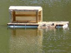 Duck houses on ponds heres a pic of the duck house floating on image result for floating duck house plans solutioingenieria Choice Image