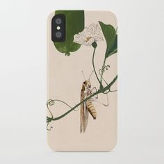 Buy Grasshopper on Gourd Vine iPhone Case by artysmedia. Worldwide shipping available at Society6.com. Just one of millions of high quality products available.