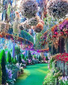 🔥 breathtaking gardens located in Singapore 🔥 : NatureIsFuckingLit Beautiful Places To Travel, Cool Places To Visit, Beautiful World, Beautiful Gardens, Wonderful Places, Nature Pictures, Beautiful Pictures, Singapore Garden, Fantasy Landscape