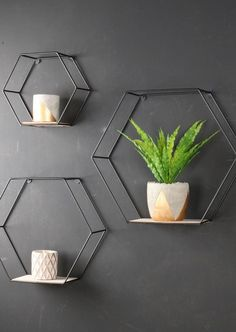 Set of 3 Industrial Hexagonal Wall Shelves Metal and Wood Industrial Shelving Units Sold in a set of three. Perfect for creating artistic wall displays. Shelf dimensions Large = x x Medium = x x Small = x x Black wire frame with wooden Industrial Shelving Units, Industrial House, Industrial Interiors, Industrial Furniture, Industrial Style, Kitchen Industrial, Industrial Apartment, Industrial Metal, Industrial Closet