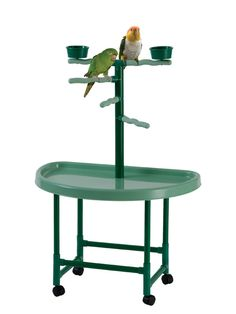 Multiple perches provides your pet w/an area to exercise & play area outside of the cage. Durable plastic construction makes clean up a breeze. Raised base is safe, sturdy & aids in reducing scattered debris. Parrot Pet, Parrot Toys, Caique Parrot, Bird Play Gym, Parrot Play Stand, Best Pet Birds, King Cage, Bird Stand, Bird Perch