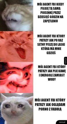 wszystkie memy z neta :v # Humor # amreading # books # wattpad Avatar Ang, Polish Memes, Past Tens, Funny Mems, Komodo Dragon, Wtf Funny, Best Memes, True Stories, Haha