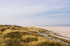 Juist, North sea, Germany. The only way to get around is by horse or on foot.