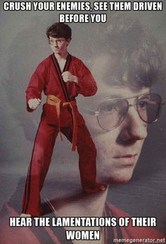 Karate Kyle - Crush your enemies, see them driven before you hear the lamentations of their women
