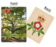 5. Tree ~ English Oak Tudor, English, English Language