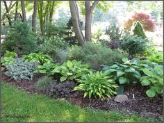 A hostas shade garden with plenty of chartreuse and blue-greens.