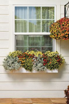 Gorgeous 50+ Awesome Plant Combinations for Window Boxes https://gardenmagz.com/50-awesome-plant-combinations-for-window-boxes/