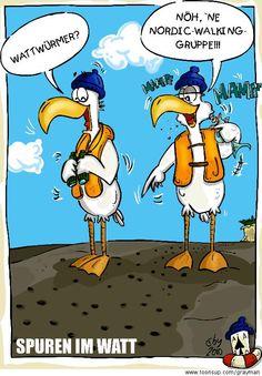 #Vögel #Möwen #Watt #Meer #Sand #Löcher #Würmer #Wattwürmer #Fernglas #Gruppe #Nordicwalking