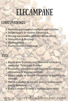 The Magick of Herbs: Elecampane (Printable for Your BOS) – Witches Of The Craft®akd Horseheal and Scabwort Magic Herbs, Herbal Magic, Plant Magic, Green Witchcraft, Wicca Witchcraft, Witch Herbs, Herbal Witch, Healing Herbs, Healing Stones
