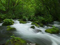 Oirase Stream in Aomori Prefecture