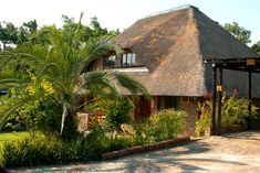 Chalet 226a, Shongwe Ingwe, is a privately-owned chalet which is available to let throughout the year. This fully furnished luxury chalet is situated within the Kruger Park Lodge, an RCI four-star golf resort in Hazyview, 10 minutes' drive from the famous Kruger National Park, Phabeni Gate, and a 35-minute drive from the Kruger Mpumalanga International Airport. Click on pic to see more. Park Lodge, Kruger National Park, International Airport, Lodges, Gate, African, Cottage, Luxury, Cabins