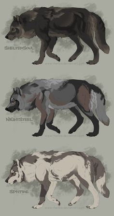 Semi-Realistic Wolf Adoptables Auctions - CLOSED by Therbis.deviantart.com on @DeviantArt