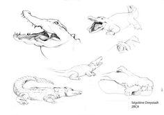 Crocopik : la nouvelle mascotte des concept artists #Illustration #cat #crocodile #mascot #bellecourecole