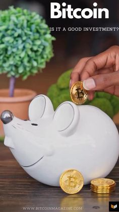Is bitcoin a good investment? #bitcoin #bitcoinmining #bitcoincash #bitcointrading #bitcoininformation #bitcoininvesting #cryptocurrency #crypto #cryptocurrencies #cryptonews #cryptocurrencytrading #cryptocurrencymining #cryptowallet #financetips #financeinvesting Make Money Blogging, Make Money Online, Ways To Save Money, How To Make Money, Magazine Articles, Best Investments, Financial Literacy, Investing Money, Crypto Currencies