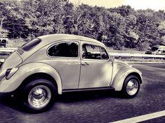 Old school vw beetle or bug