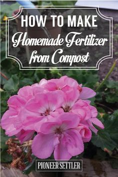 How to Make Homemade Fertilizer from Compost | DIY  Gardening Boosters by Pioneer Settler at http://pioneersettler.com/homemade-fertilizer-compost/