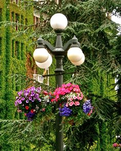 Lamppost with hanging flower basket at Empress Hotel, Victoria BC
