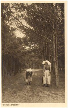 Het lopen over de zandweg in het bos #NoordBrabant