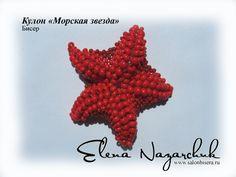 starfish tutorial