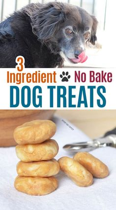 Super easy homemade dog treats your pup will love! These no bake dog treats are . - Super easy homemade dog treats your pup will love! These no bake dog treats are perfect to use as p - No Bake Dog Treats, Peanut Butter Dog Treats, Diy Dog Treats, Healthy Dog Treats, Treats For Puppies, Birthday Treats For Dogs, Puppy Treats, Soft Dog Treats, Pumpkin Treats For Dogs
