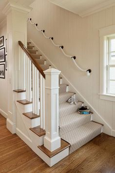 Small Shingle Beach Cottage Design: Rope railing on staircase. Carpet Staircase, Staircase Runner, Staircase Railings, Staircase Design, House Staircase, Rope Railing, Staircases, Stair Handrail, Carpet Runner On Stairs