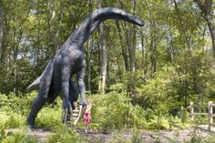 THERIZINOSAURUS | http://www.dinosoria.com/dinosaures/therizinosaurus-3.jpg