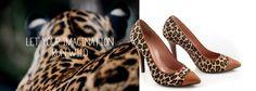 Fashion is Wild! Leopard Pumps, Fashion Shoes, Kitten Heels, Luxury, Cinderella, Women, Leopard Wedges, Woman