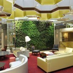 Jardines verticales para interiores.