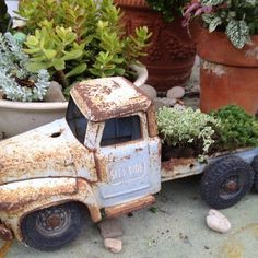 flower beds ideas - Google Search