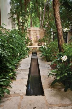 In an Italy inspired South Florida garden peace lilies surround a stone rill and fountain designed by Terry Rakolta. Photo by Robin Hill. Via www.gardendesign.com.