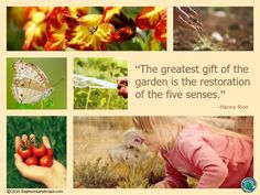 Flowering Wisdom | Gardening Quotes http://eaglesonlandscape.com/flowering-wisdom-gardening-quotes-20/