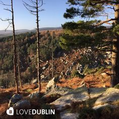 We love the #mountains in #Dublin #LoveDublin #Nature #Hiking #Walking #Scenery Mountain S, Dublin, Grand Canyon, Scenery, January, Hiking, Photo And Video, Nature, Travel