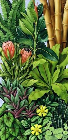 FOLIAGE III( oil on canvas) by Catherine Abel