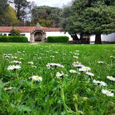 Cómo se nota la primavera - Pazo de Santa Cruz de Rivadulla
