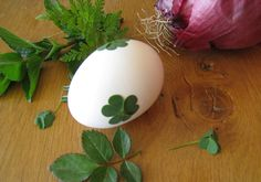 Easter Eggs Naturally Dyed with Onion Skins and Herbs